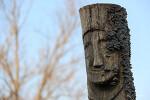 버섯돋은 나무정승의 미소