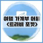 [경비정리] 여행 가계부 어플 트라비포켓 사용법 및 비교 후기