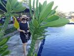 신들의 섬, 발리 출장 1일차 : 발리 최고의 리조트  물리아Mulia 와 세계에서 가장 멋진 뷰 포인트 몇 위안에 든다는 해안에서 건진 인생샷 2