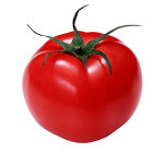 토마토를 무조건~ 많이~ 먹어야 하는 이유