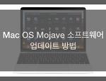 macOS 모하비 mojave 퍼블릭 베타2 공개 및 시스템 업데이트 방법