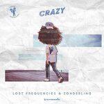 Lost Frequencies & Zonderling - Crazy 가사 해석 크레이지