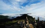 고한 함백산 야생화축제 2018 야생화 향기 가득한 시원한 여름여행