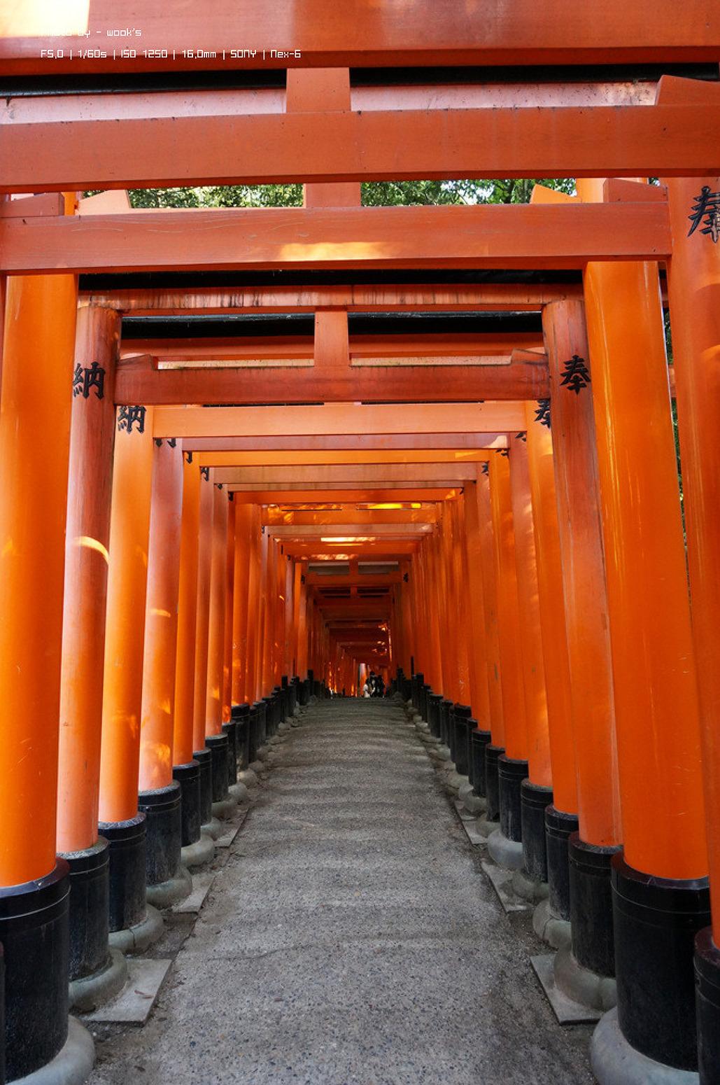 오사카를 가자 - 신혼여행 5일차. 교토