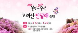 [축제정보] 강화 고려산 진달래 축제 안내