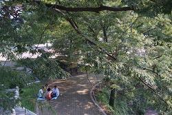 함안, 박물관~사자석탑 걷고 싶은 산책로