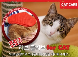 고양이 털빠짐 해결사 털관리제품 포포즈 러브 글러브 fot CAT 구매 후기
