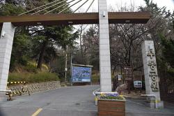 인천 수봉공원 벚꽃 호국 여행
