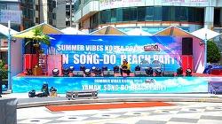 [포토에세이] SUMMER VIBES KOREA 2015 야만 송도 비치 파티! (스압주의)