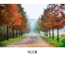 가을을 보내는 인천대공원