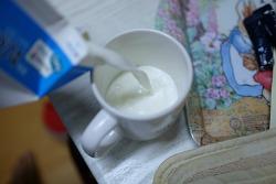 홈메이드 요거트. 우유로 불가리스 만들기 -ㅅ-;;;