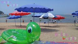 [인천]을왕리 해수욕장 - 한여름 풍경