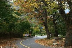 적상산 서창 마을, 10번째 가을