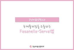 눈꺼풀처짐 Fasanella-Servat법