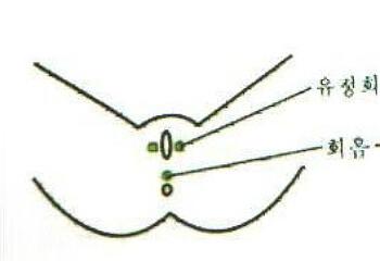 상견질환 10가지; 병원장 특강35(11.08.16)