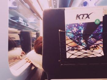 포근한 감성사진 :) 기차를 타고 집으로 가는길