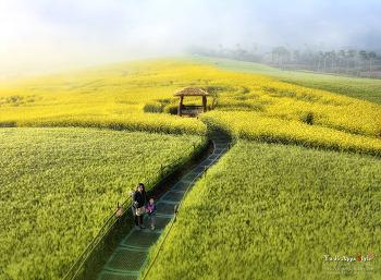 고창 학원농장...2