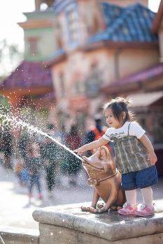 아이 사진, 역광으로 잘 찍는 몇가지 방법.