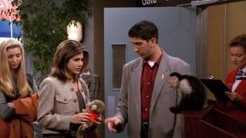 미드 프렌즈 영어공부 시즌1 21화 Curious George