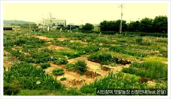 서울시민 텃밭농장 신청안내(서초, 강서) 알아보기