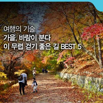 가을, 바람이 분다 - 이 무렵 걷기 좋은 길 BEST 5 [여행의 기술]