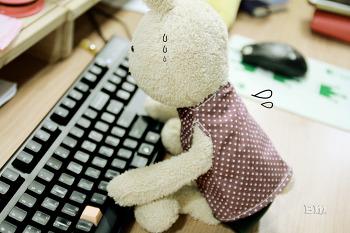 블로그, 뭔가... 특화된 주제로 하고 싶다..