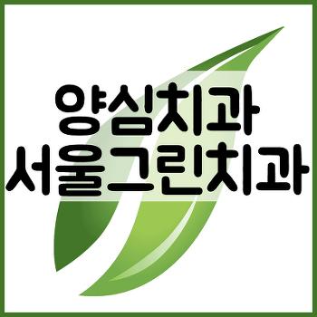 서울그린치과 양심치과 강창용 후기