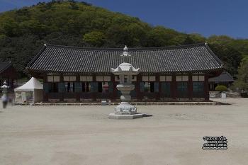 18년 4월 - 한국 - 고창 - 선운사