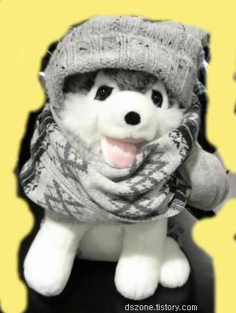 추위에 대처하는 브라우니의 자세 + 빈폴 모자, 비니