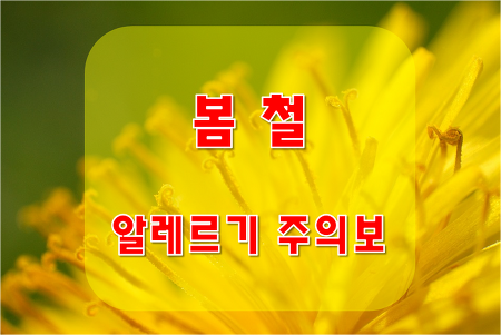 봄 철 알레르기 질환의 종류와 예방법