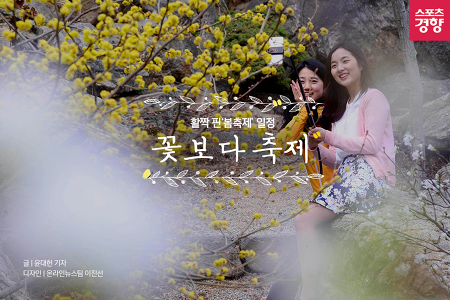 [카드뉴스] 활짝 핀 봄축제 일정 '꽃보다 축제'