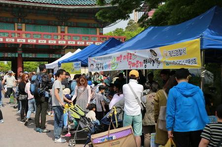 (광진)어린이의 달 5월! 광진경찰+서울동화축제 그 현장속으로 가보실까요?