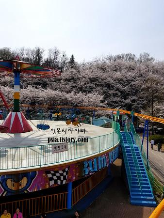 광주 어린이대공원/중외공원 벚꽃 구경 + 놀이..