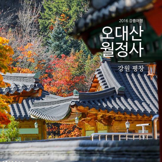 [2016 강릉여행 Part 5] 평창 오대산의 월정사에서 단풍구경 제대로 했습니다 ^^;
