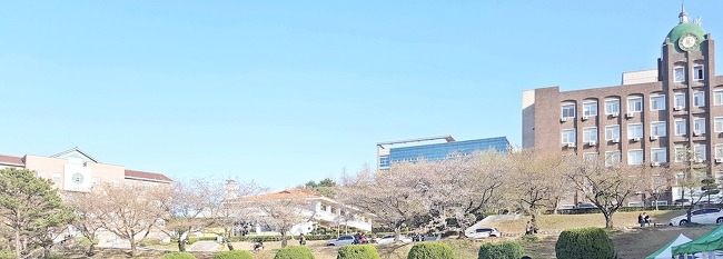 벚꽃과 함께 찾아온 순천향대학교 봄! 재학생이 소개하는 아름다운 캠퍼스와 순천향대학교 맛집(벚꽃축제, 오월의 광장, 신화곱창)