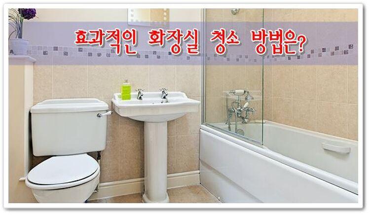 효과적인 화장실 청소 방법은?