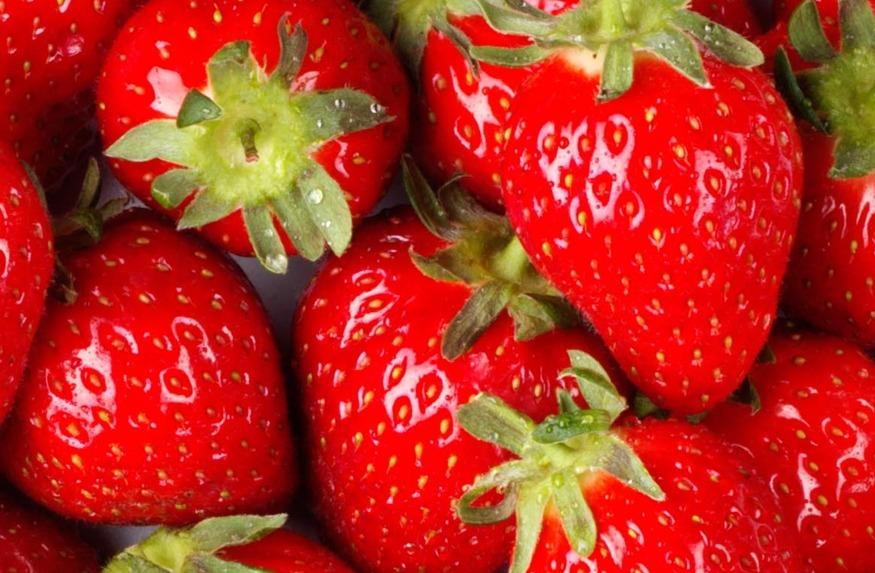 철없는 과일,딸기_비타민C가 사과의 10배