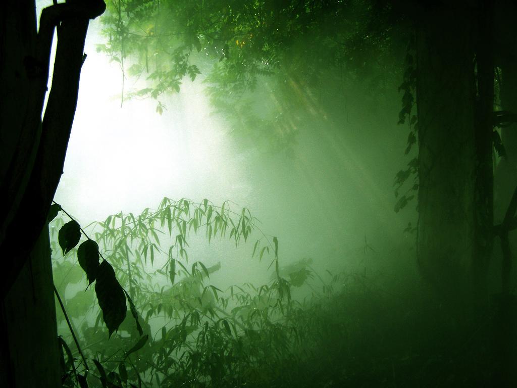 비춤님의 블로그 이미지