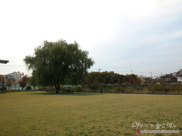 구로 푸른수목원 5