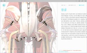 9926_win10_food_health_094