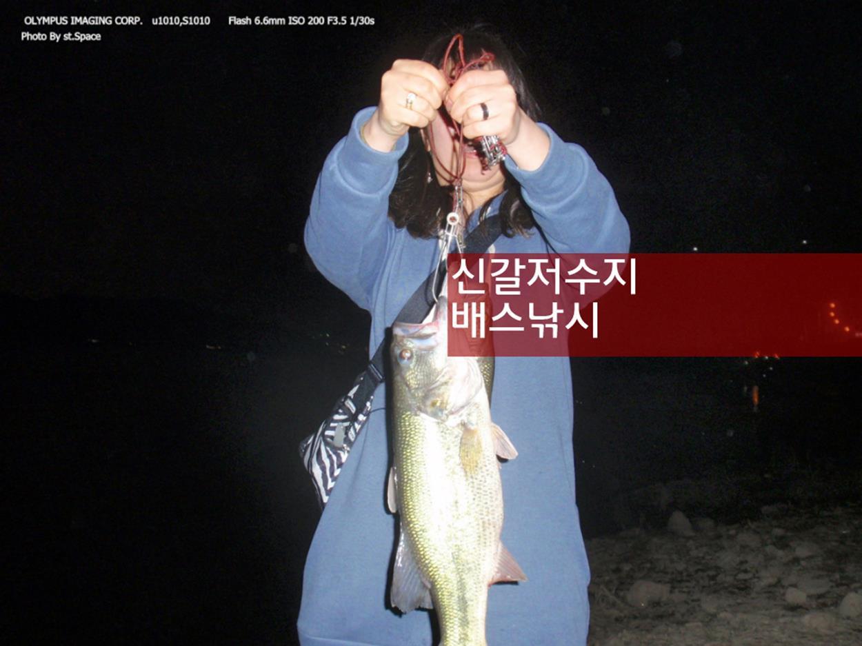 기흥 신갈저수지 배스낚시 – 골프장 포인트