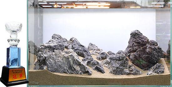 수족관 장식 경연대회 수상작(2013 中國)