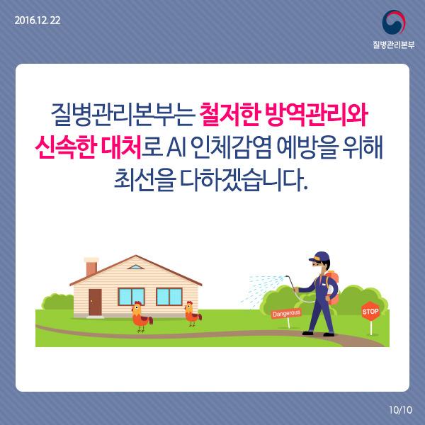 조류인플루엔자 예방 카드뉴스
