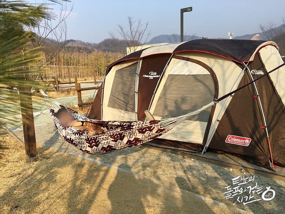 김천 산내들캠핑장 번데기 콜맨아스테리온2 해먹 코오롱해먹