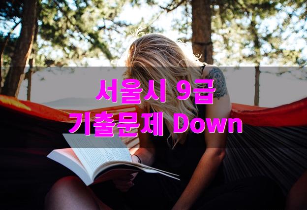 2016 서울시 9급공무원 기출문제 다운로드