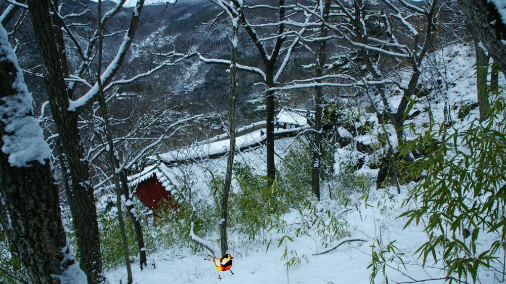 계명암 겨울풍경