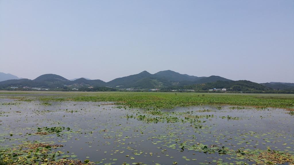 [경남 창원] 주남저수지