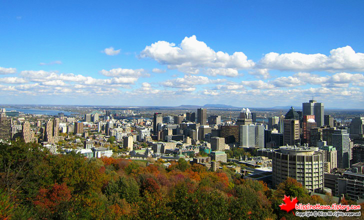 캐나다 동부여행 몬트리올 몽 로얄 공원 전망대