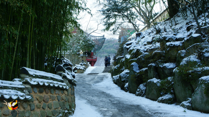 눈오는날 범어사 설법전 뒷길