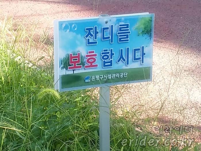 멸종위기 식물? '잔디를 보호 합시다'